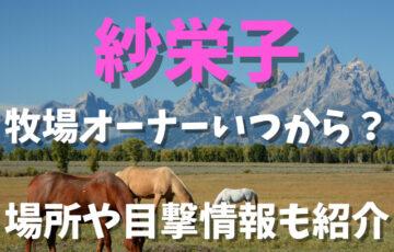 紗栄子は牧場オーナーいつから?場所や目撃情報も紹介